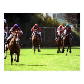 Carte postale de champ de course de chevaux