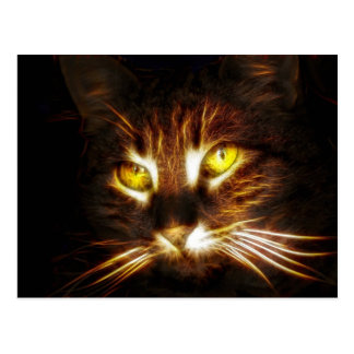 Carte postale de chat de Kitty