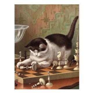 Carte postale de chat d'échecs