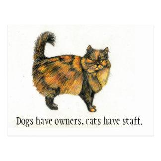 Carte postale de chat tigré de Brown