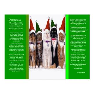 Carte postale de chats de Noël de DESIDERATA