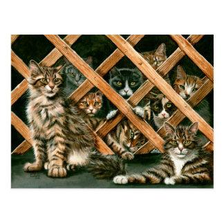 Carte postale de chats de trellis