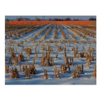 CARTE POSTALE de chaume de maïs du Kansas Milou