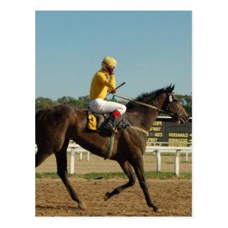 Carte postale de cheval de course de pur sang