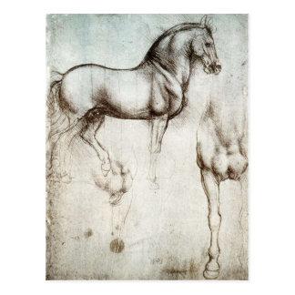 Carte postale de cheval de da Vinci