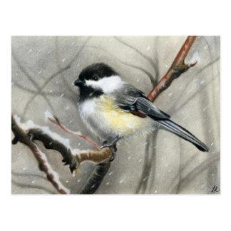 carte postale de chickadee d'oiseau d'hiver