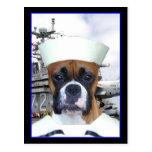 Carte postale de chien de boxeur de marin de marin