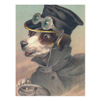 "Carte postale ""de chien vintage de conducteur"""