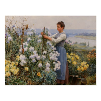 Carte postale de chrysanthèmes par le chevalier de