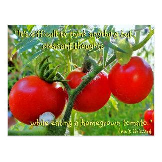 Carte postale de citation d'amusement de tomate