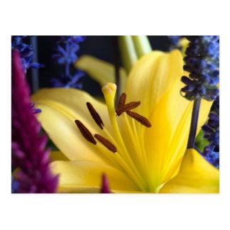 Carte postale de composition florale en lis
