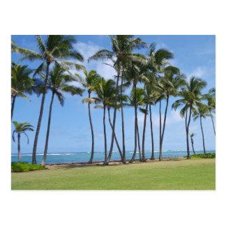 Carte postale de côte d'Hawaï