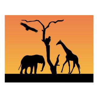 Carte postale de coucher du soleil de silhouette