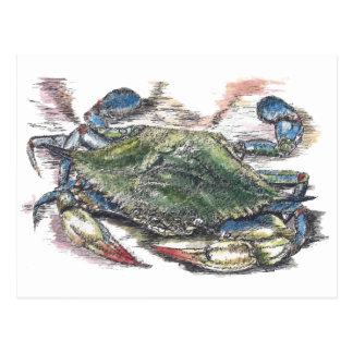 Carte postale de crabe bleu