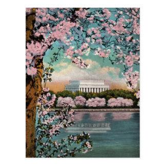 Carte postale de cru de fleurs de cerisier