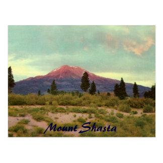 Carte postale de cru de Shasta de bâti