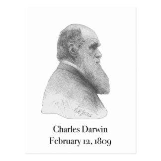 Carte postale de Darwin