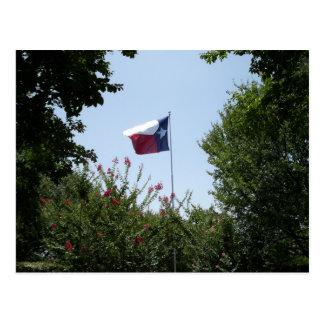 Carte postale de drapeau du Texas