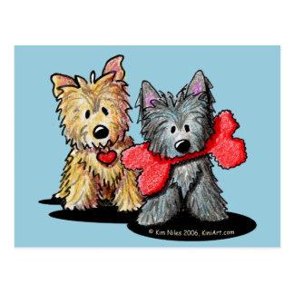 Carte postale de duo de Terrier de cairn