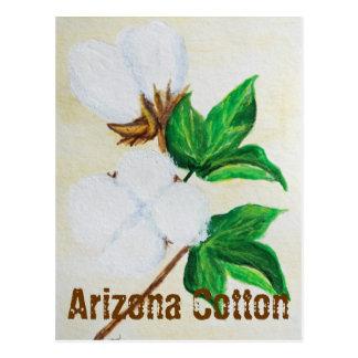 Carte postale de faits de coton de l'Arizona
