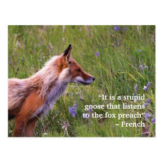 Carte postale de faune de Fox