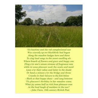 Carte postale de fenaison de solstice d'été