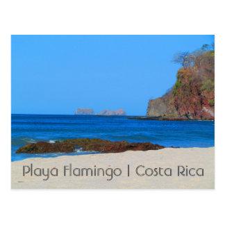 Carte postale de flamant du Costa Rica Playa