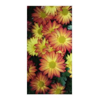 carte postale de fleur modèle pour photocarte