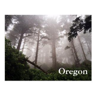 Carte postale de forêt de l'Orégon