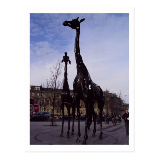 Carte postale de girafes d'Edimbourg