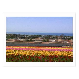 Carte postale de gisements de fleur de Carlsbad
