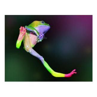 Carte postale de grenouille d'arc-en-ciel