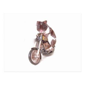 Carte postale de hamster de moto