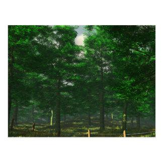 Carte postale de la clarté de la nature