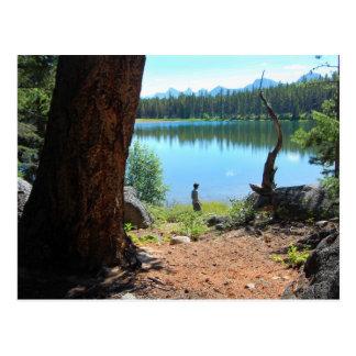 Carte postale de lac Wabasso