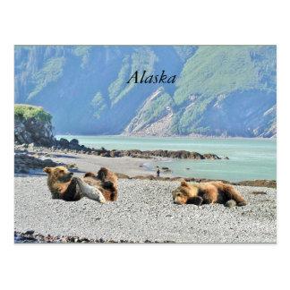 Carte postale de l'Alaska avec des petits animaux