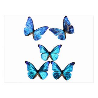 Carte postale de lueur de papillons