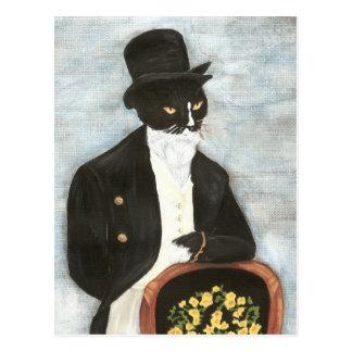 Carte postale de M. Darcy Cat