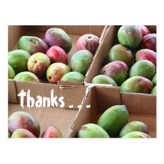 Carte postale de manie de mangue