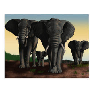 Carte postale de marche de troupeau d'éléphant