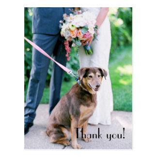 Carte postale de Merci de mariage
