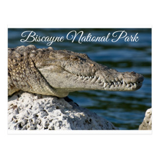 Carte postale de Miami Beach la Floride de parc de
