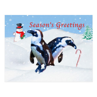 Carte postale de Noël avec des pingouins dans la