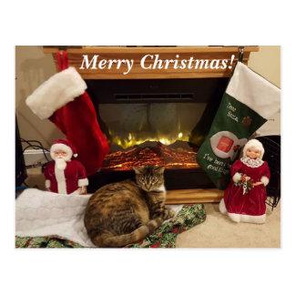 Carte postale de Noël de Luna