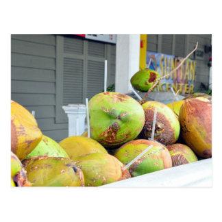 Carte postale de noix de coco de Key West FL de