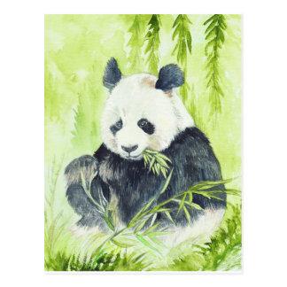 Carte postale de panda géant