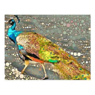 Carte postale de paon de zoo