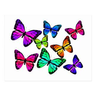 Carte postale de papillons