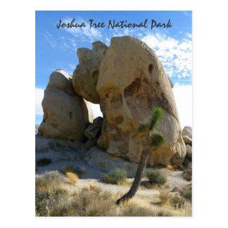 Carte postale de parc d'arbre de Joshua !