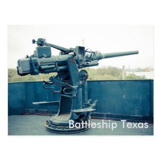 Carte postale de parc d'état du Texas San Jacinto